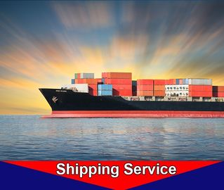 Sea Freight Delivery Service Container Ship Routes Shenzhen To Dubai Hamad