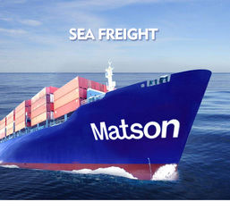 Professional Sea Freight Forwarder , Sea Cargo Services Qingdao To Dallas New York
